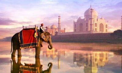 В Индии растет популярность стейблкойнов