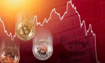 Индекс доминирования биткоина превысил 50% на фоне падения криптовалютного рынка